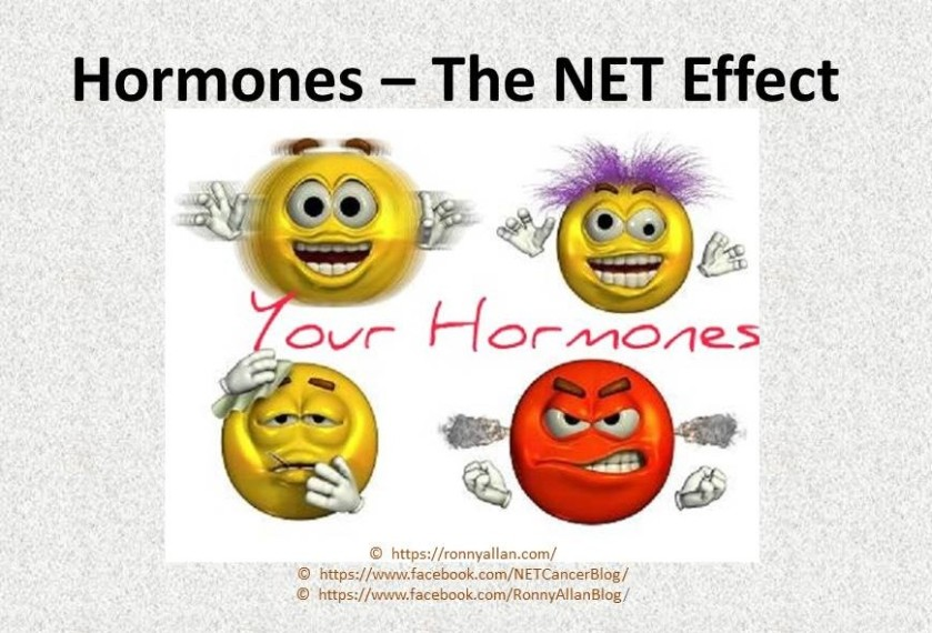 Hormones – The NET Effect