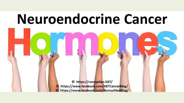 HormonesNET 2018