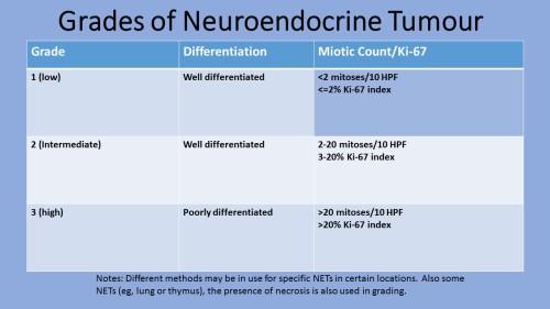 Grades of Neuroendocrine Tumour