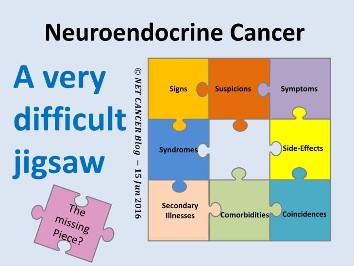 NET Cancer Jigsaw