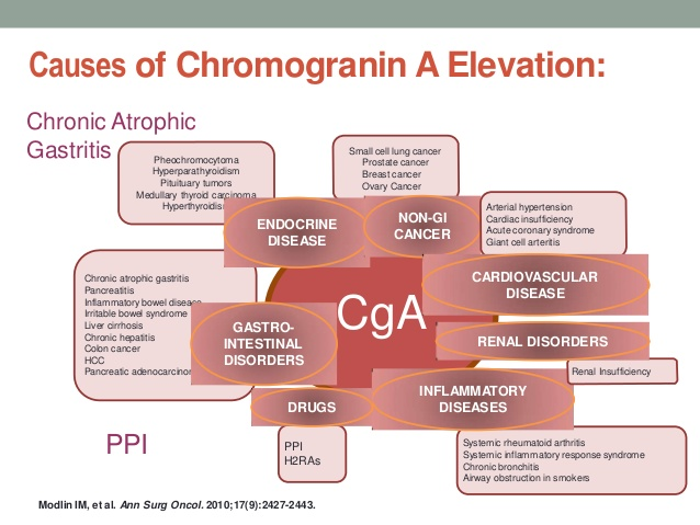causes-of-cga-elevated